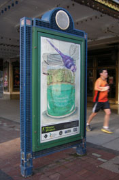 Syracuse Art Poster: Dragonfly and Green Lake.