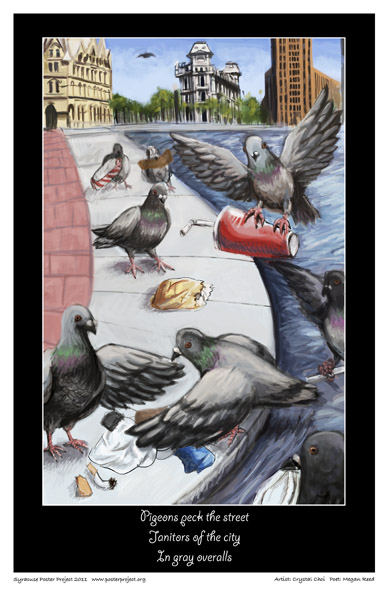 Syracuse Art Poster: Pigeon art and Clinton Square