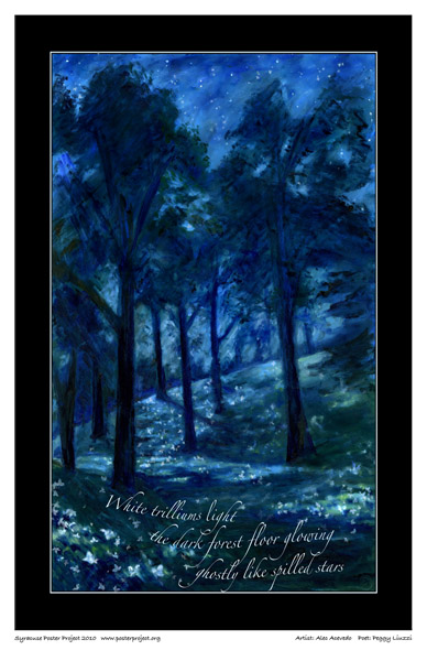Syracuse Art Poster: Forest at night with trillium