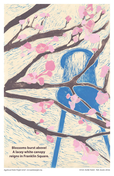 Syracuse Art Poster : Blossoms Burst, Franklin Square