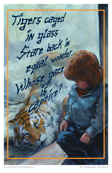 Art Poster, Syracuse, Zoo, Tiger, Child