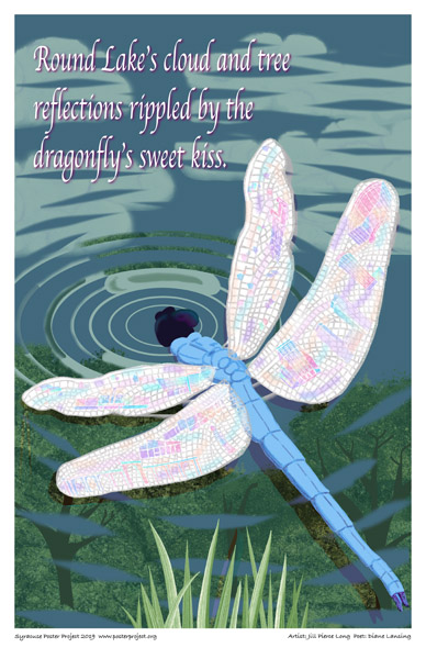 Poster, Syracuse Art, Large colorful dragonfly, face down kissing the lake