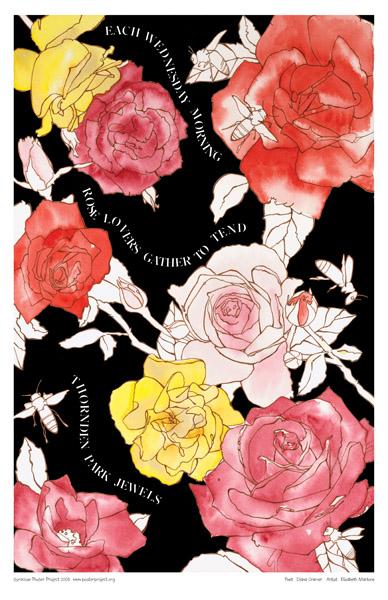 Art Poster, Syracuse, Thornden Park, Roses, Garden